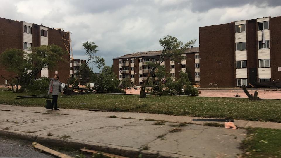 Des immeubles à logements endommagés et des arbres brisés par le vent.