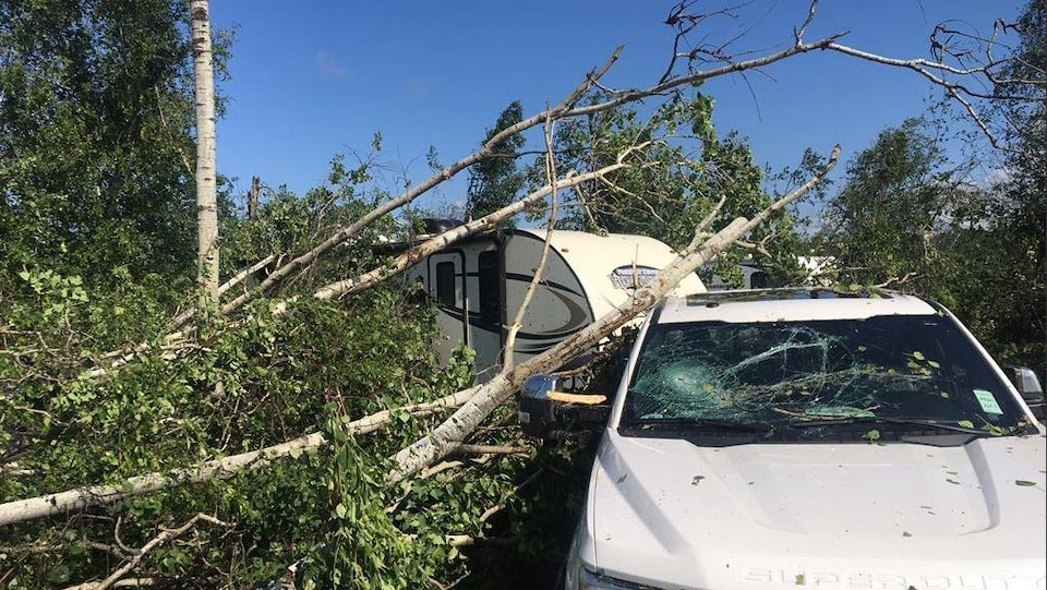 Une branche d'arbre écrasée sur une roulotte.