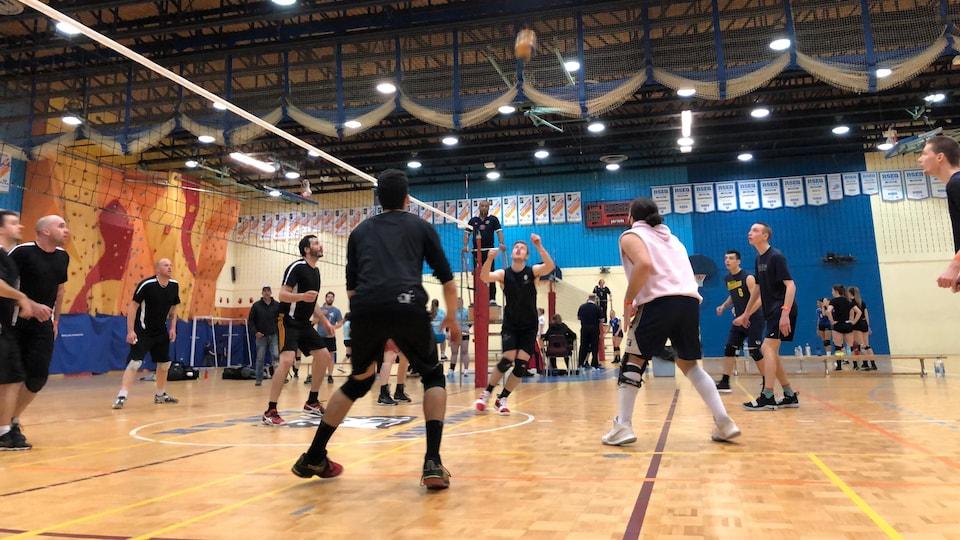 Joueurs de volley-ball en action.