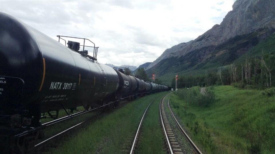 Un long convoi de wagons transportant du pétrole sur une voie ferrée.