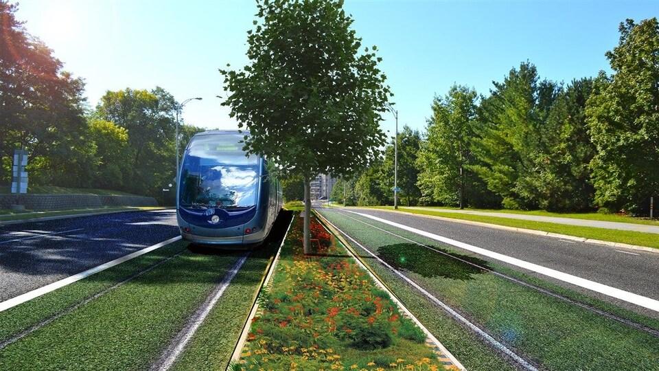 Dessin du tramway longeant le boulevard où la travée centrale est végétalisée.