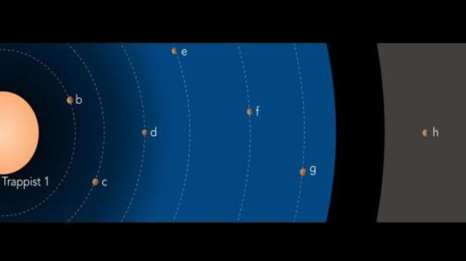 Le système planétaire autour de Trappist-1. Les tailles des objets sont à l'échelle, mais les distances sont réduites d'un facteur 10. La couleur de l'étoile est réaliste. La zone bleutée indique la région où la présence d'eau liquide est possible en surface des planètes. La zone en grisé indique la gamme possible de distances orbitales pour la planète.