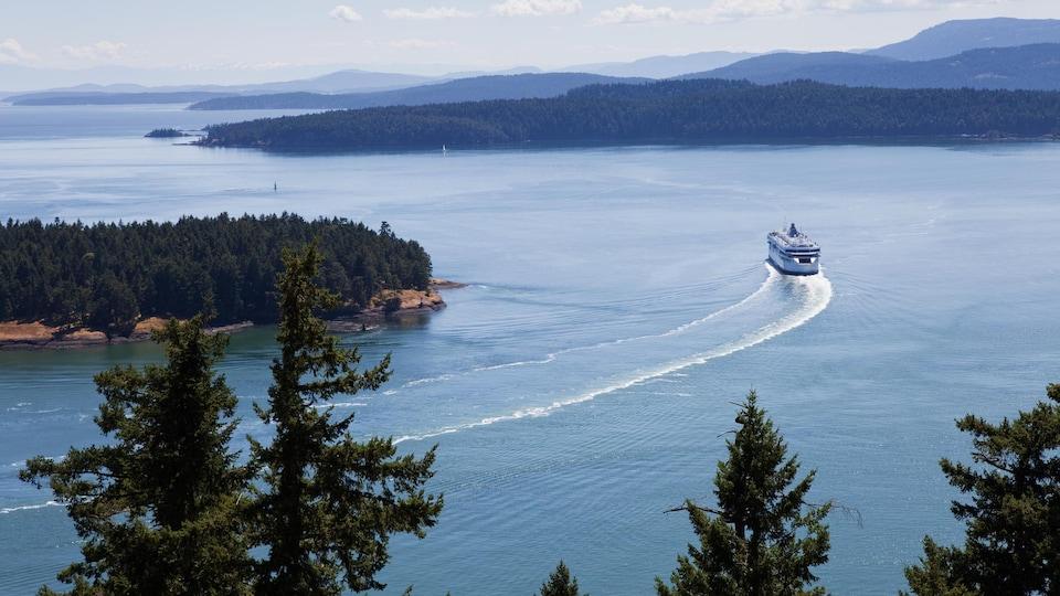 Un ferry.