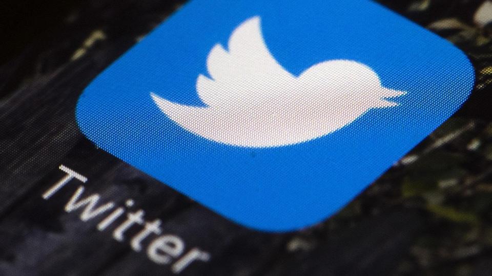 L'oiseau blanc sur fond bleu, l'icône de Twitter