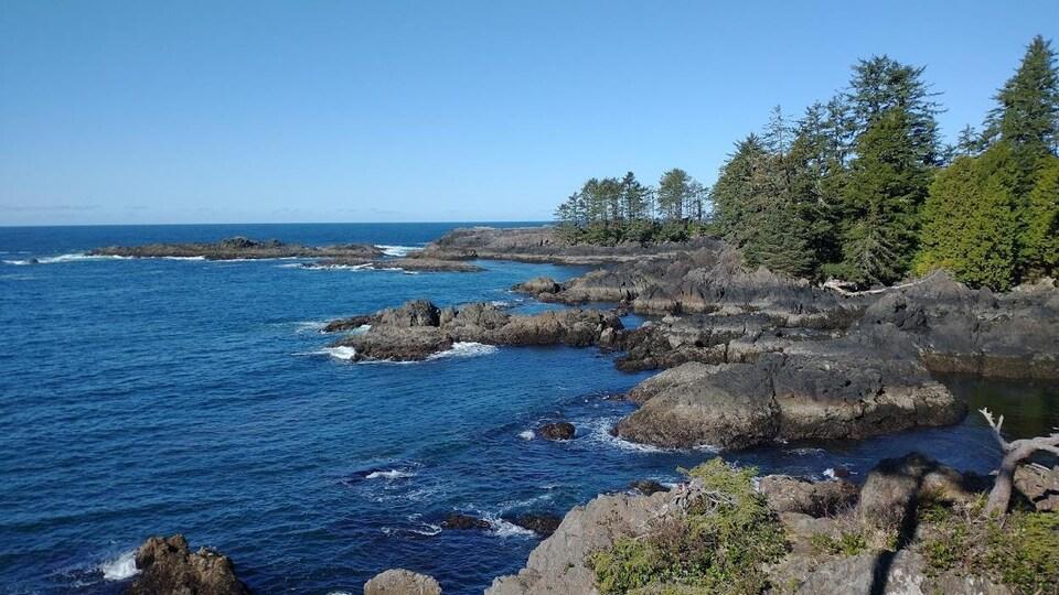 Vue de la côte depuis le parc Wild Pacific à Ucluelet.