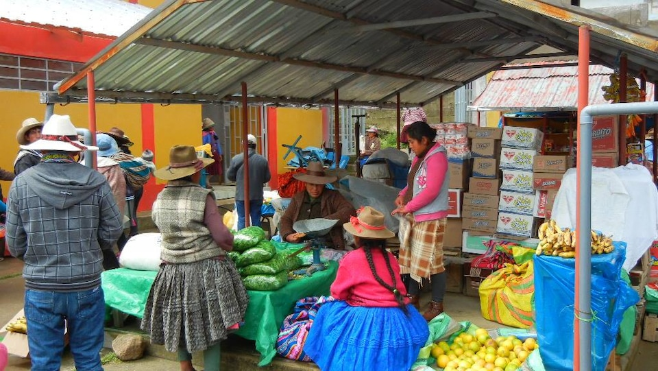 Une vendeuse de feuilles de coca au marché de Chamaca au Pérou.