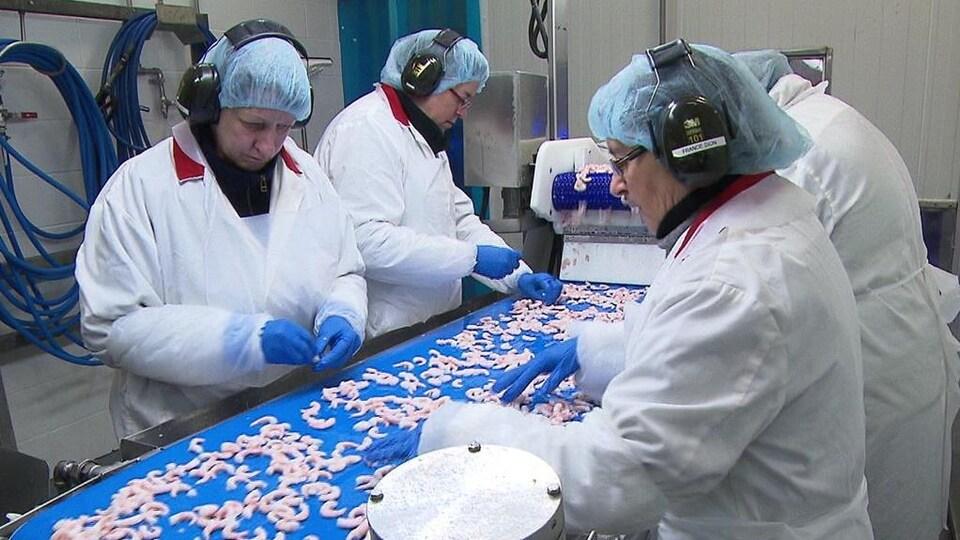 Des employés de l'usine des Fruits de mer de l'Est du Québec