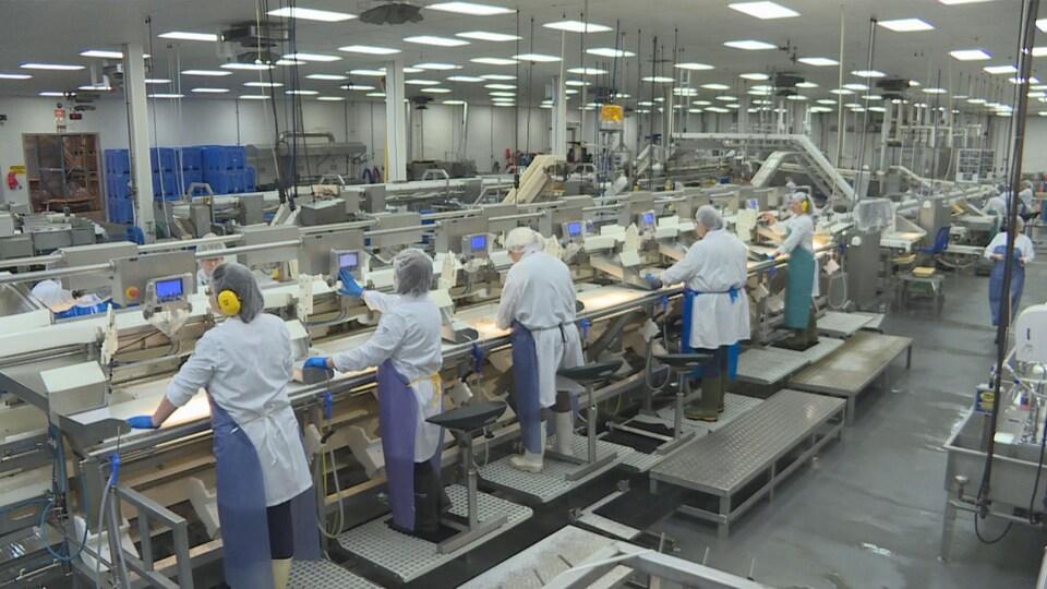 Des travailleurs dans une usine de transformation de poisson.