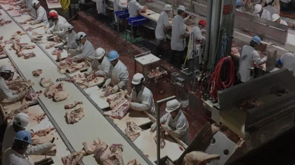 Des travailleurs dans une usine de transformation de viande.
