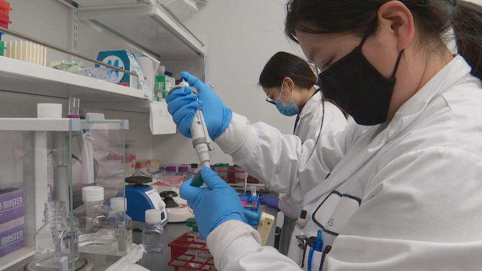 Deux techniciennes de laboratoire en train de travailler.