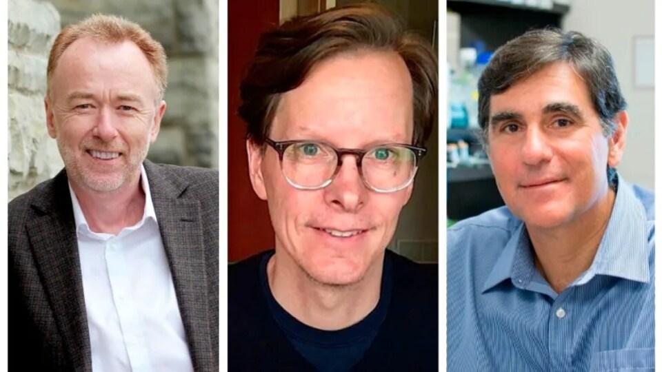 Les trois professeurs de l'Université Western de London