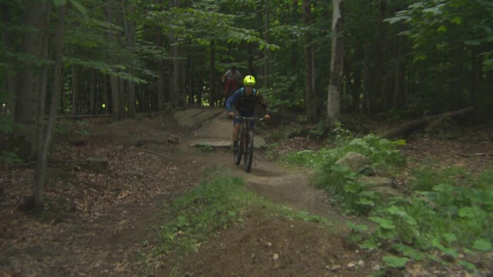 Un vélo de montagne en forêt.