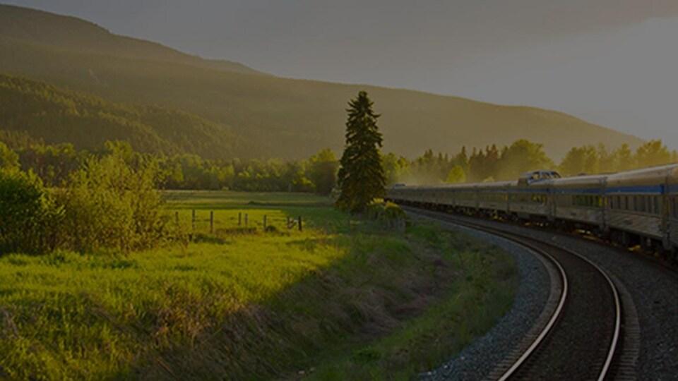 Un train dans un paysage rural.