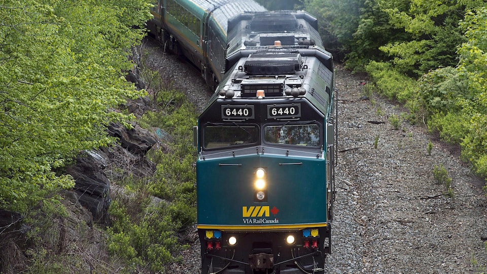 Un train de VIA Rail en mouvement à travers une zone boisée.