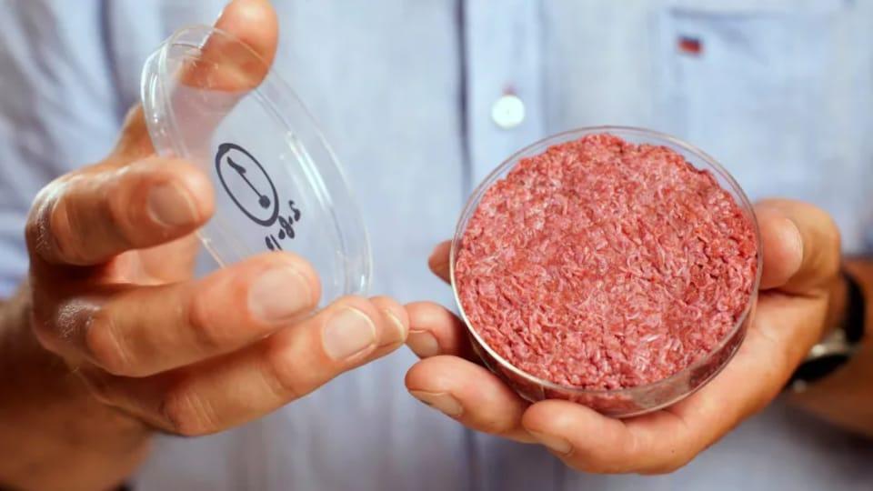 De la viande dans une boîte de Petri.