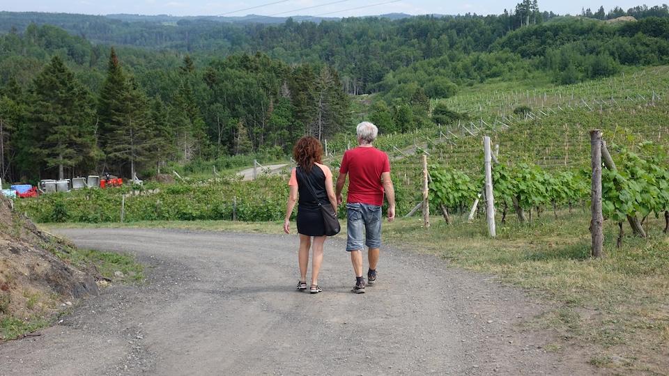 Deux visiteurs marchent dans le vignoble.