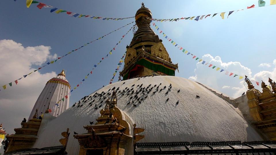 Le temple des Singes, au Népal.