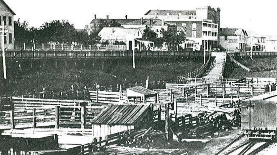 Constructions de bois près des rives d'une ville.