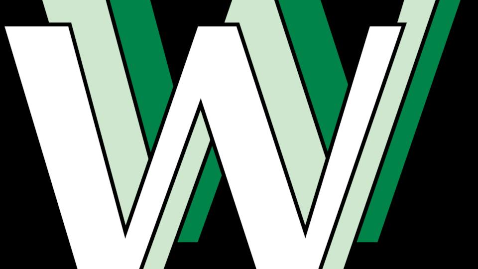 Trois « W » verts et blancs forment le premier logo du World Wide Web.