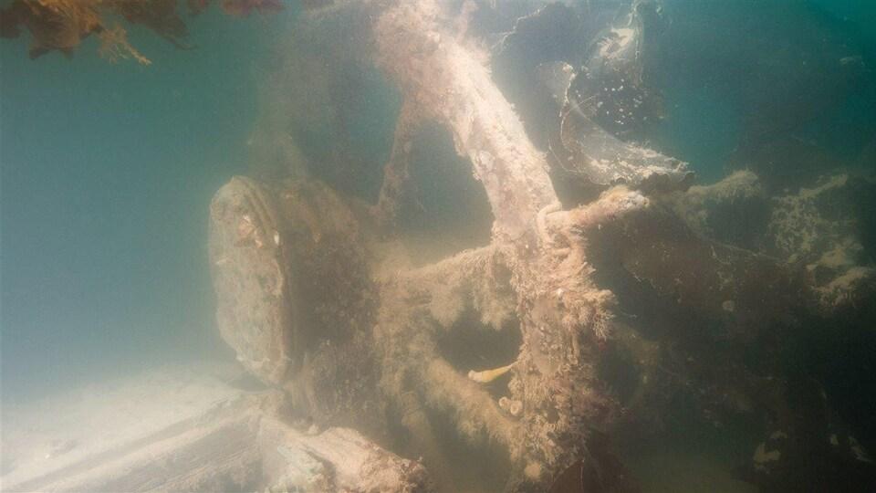 Cette image de l'épave montre la barre du HMS Terror