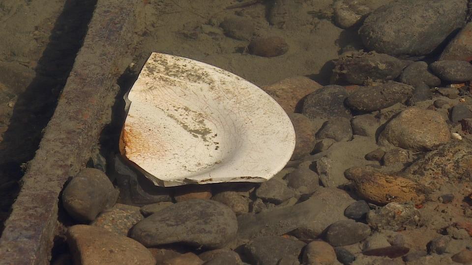 Un morceau d'assiette visible à la surface de l'eau.