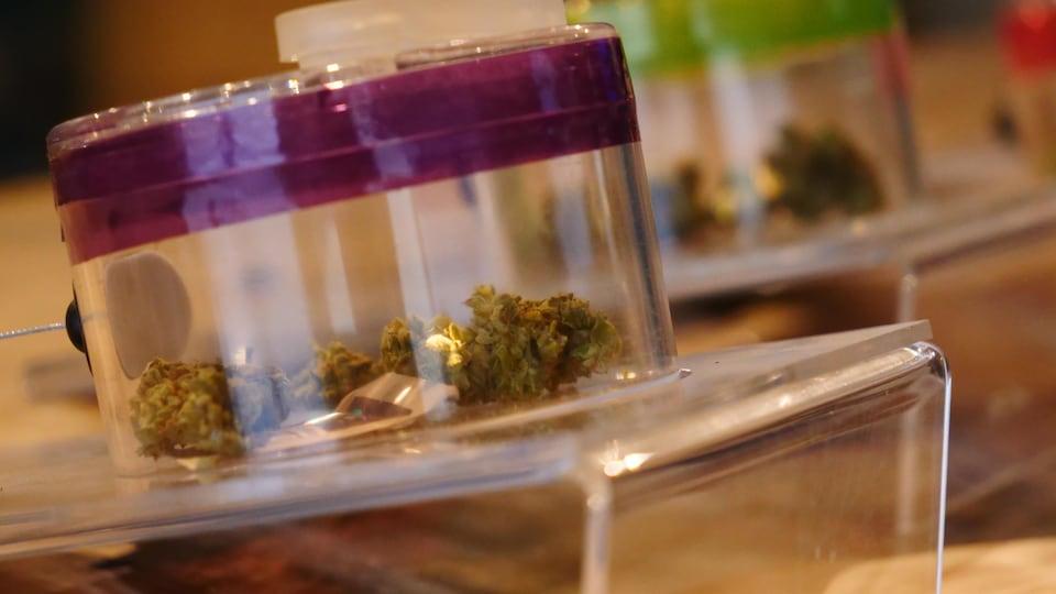 Du cannabis dans un bocal.
