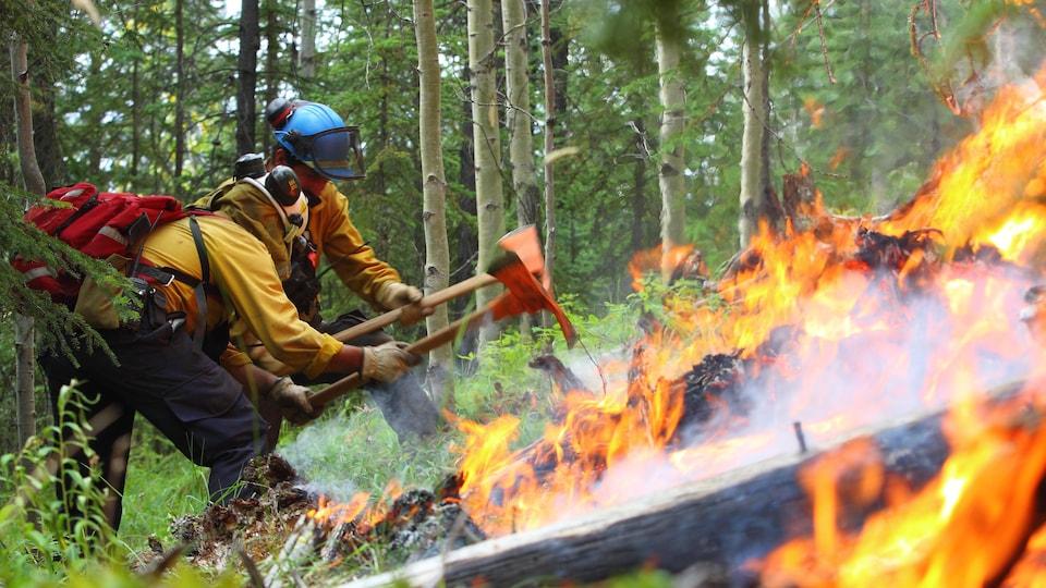 Deux pompiers avec des haches tentent de stopper un feu dans une forêt.