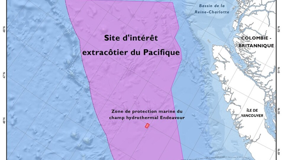 Carte de la zone marine considérée d'intérêt au large de l'île de Vancouver.