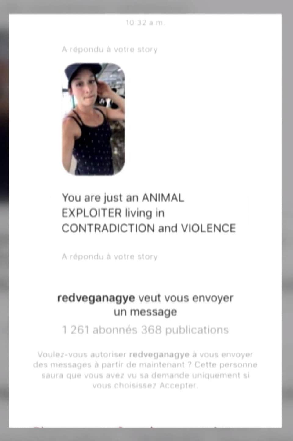 Capture d'écran d'un message envoyé par Instagram où Mylène se fait accuser d'être une «exploiteuse d'animaux».
