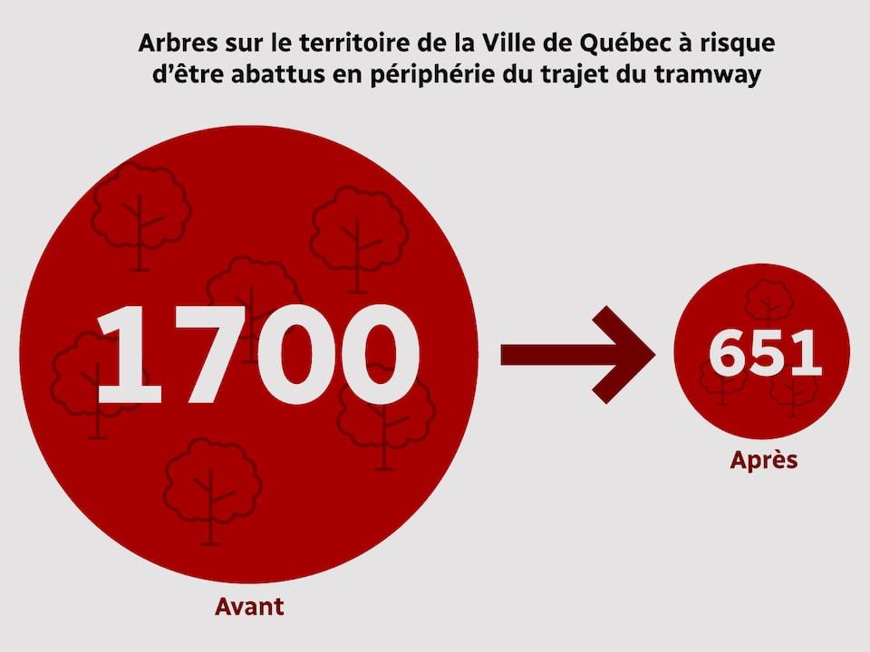 Le nombre d'arbres sur le territoire de la Ville de Québec risquant d'être abattus en périphérie du trajet du tramway passe de 1700 à 651.