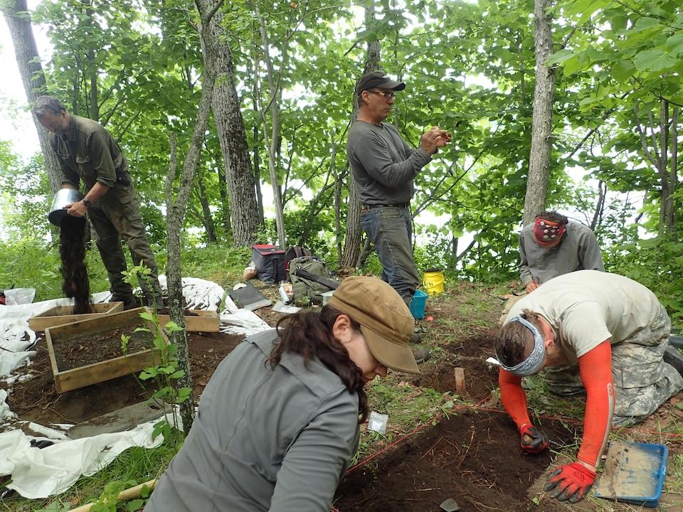 Des archéologues font du repérage en forêt.