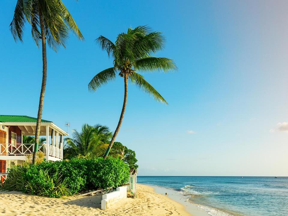La plage, des palmiers, une maison.