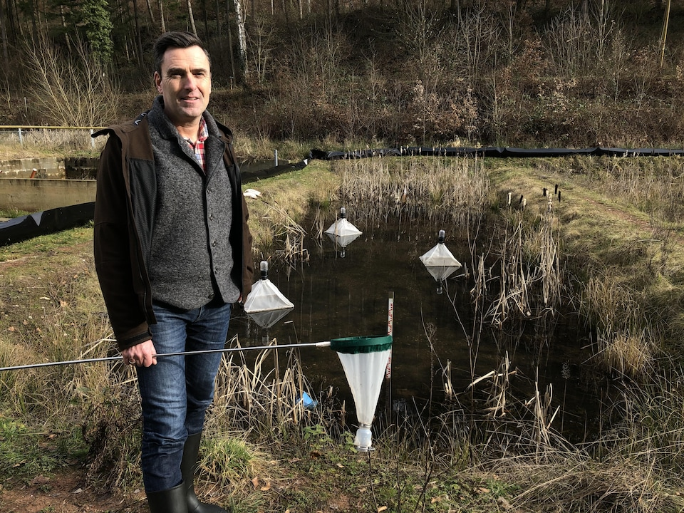 Le scientifique Carsten Brühl se tient au bord d'un étang avec un filet dans une main.
