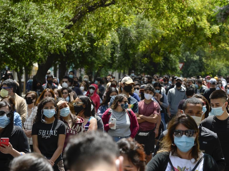 Des centaines de personnes attendent en ligne sous les arbres le 25 octobre 2020, à Santiago.