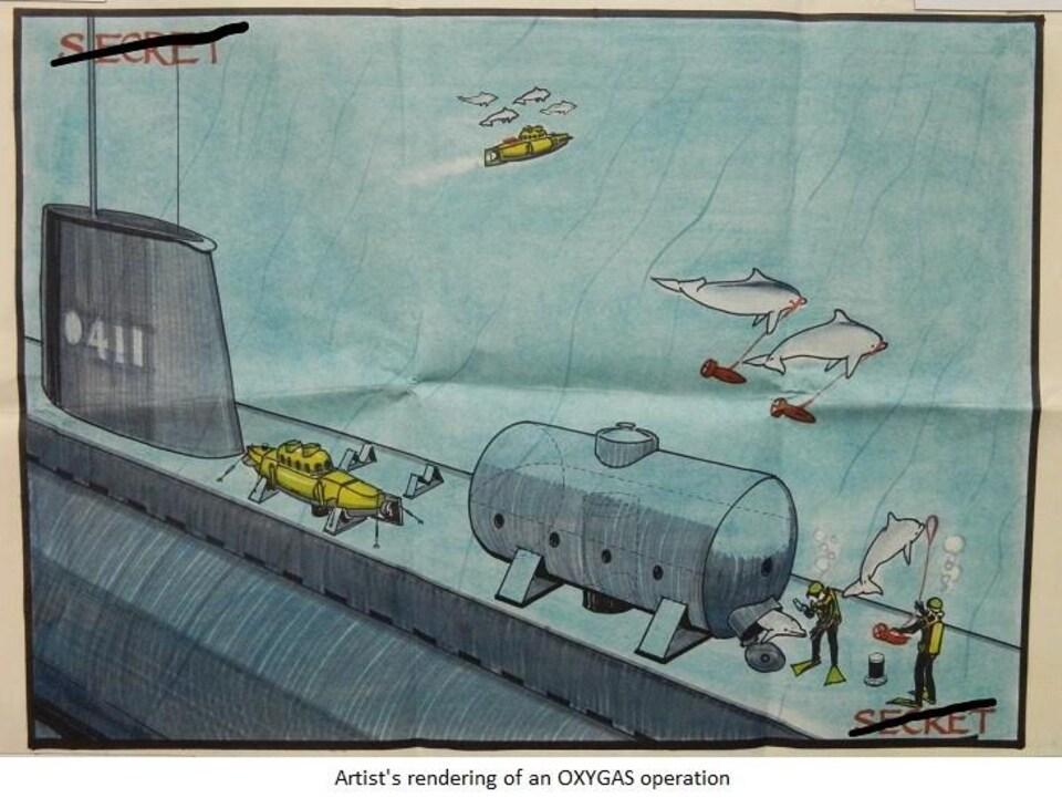 Un dessin décrivant le projet Oxygas où des dauphins sont  chargés de transporter des explosifs.