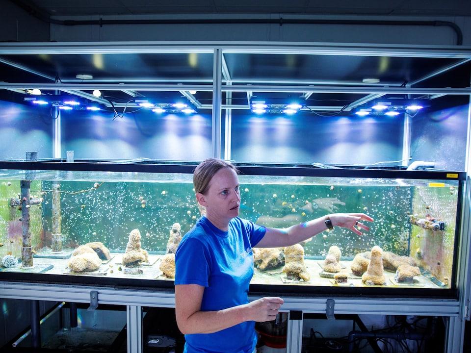 La biologiste Keri O'Neill se tient devant un aquarium de coraux à colonnes.