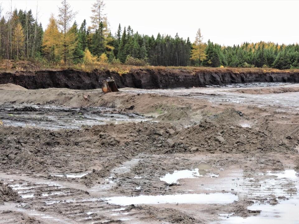 Un milieu humide complètement détruit.