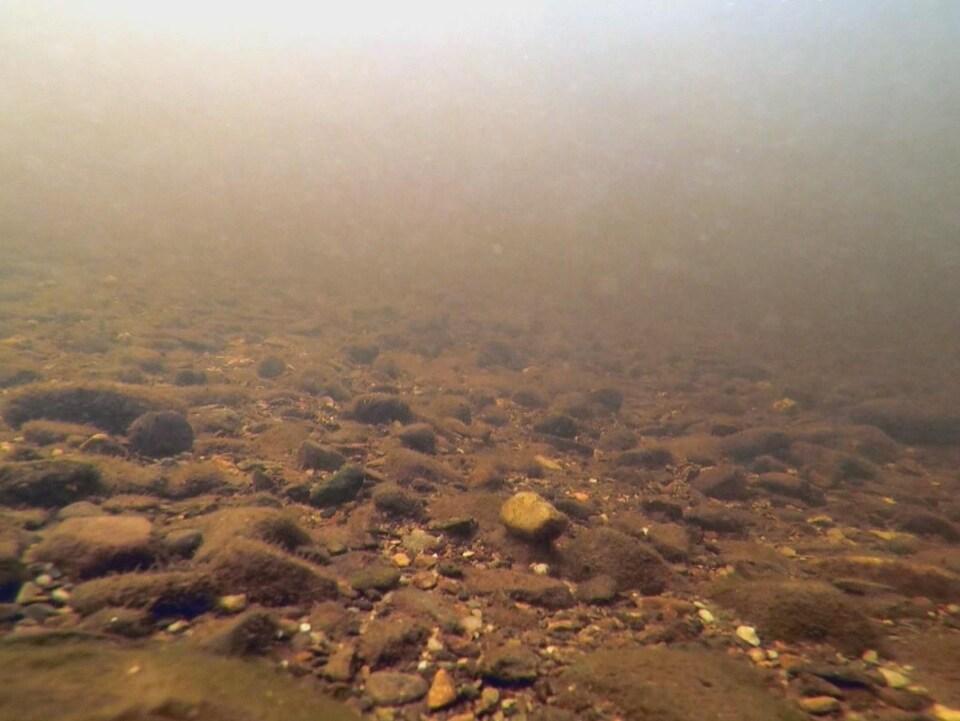 Des sédiments au fond d'un lac