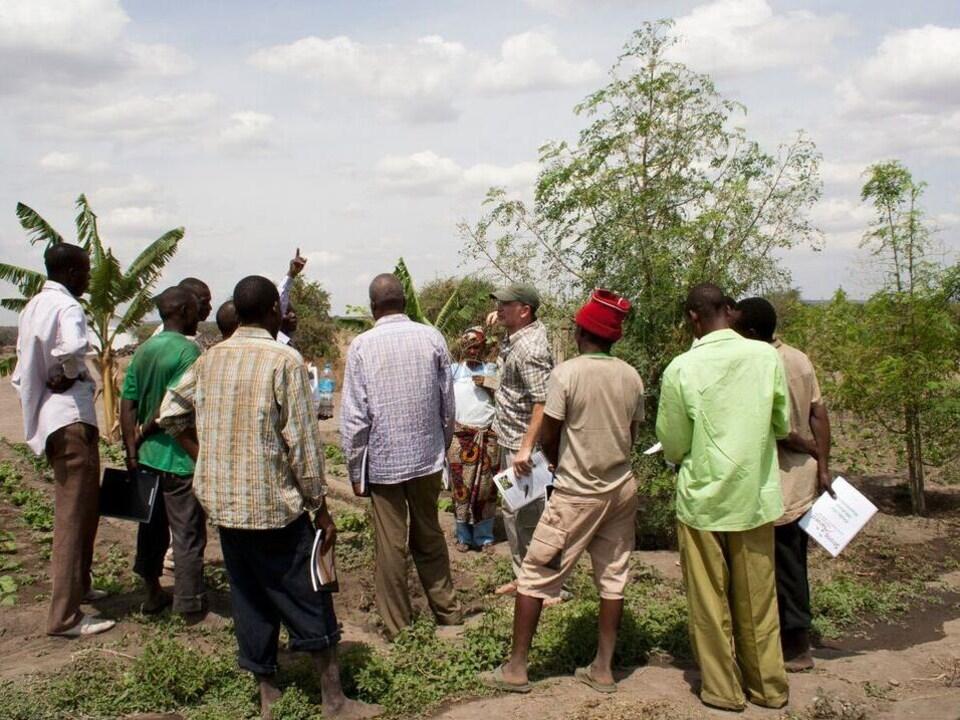 Une dizaine de personnes qui écoutent un formateur à l'extérieur près de quelques arbres.