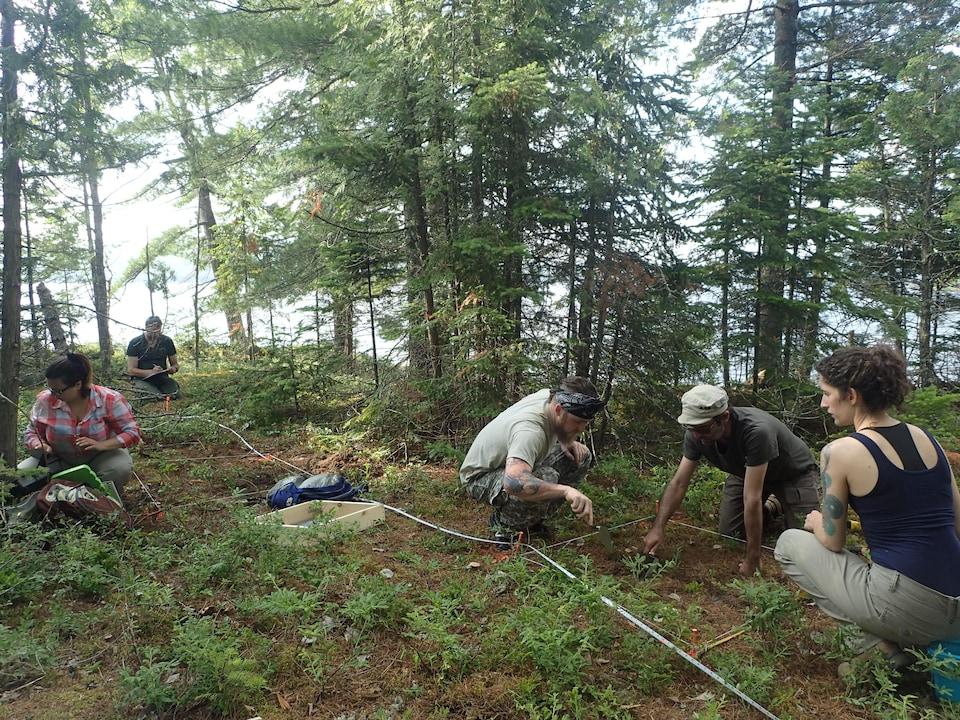 Une équipe d'archéologues délimite le sol sur le site de la pointe Manitou.