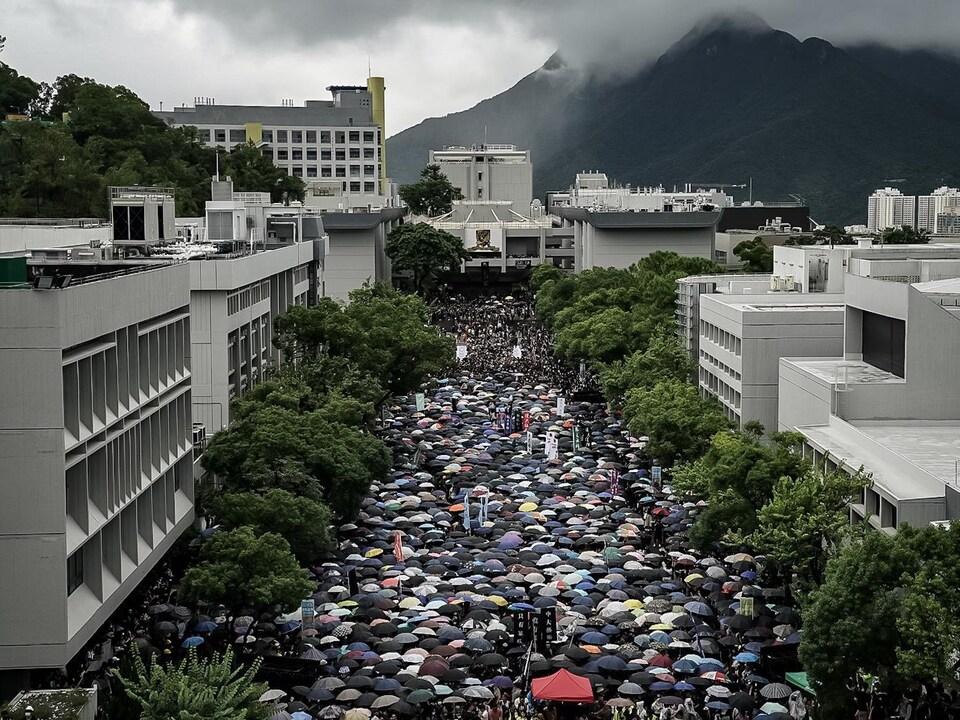 Un mer humaine composée de milliers de personnes, dont bon nombre portent des parapluies, entre les immeubles.