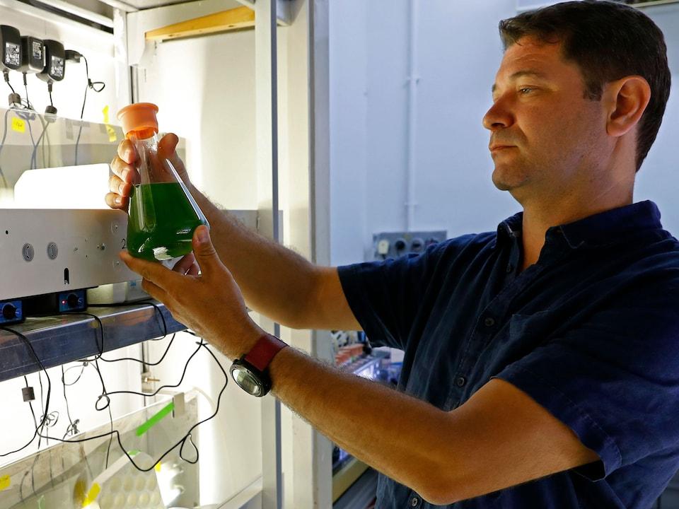 Le Pr Iftach Yacoby examine un flacon contenant des algues.