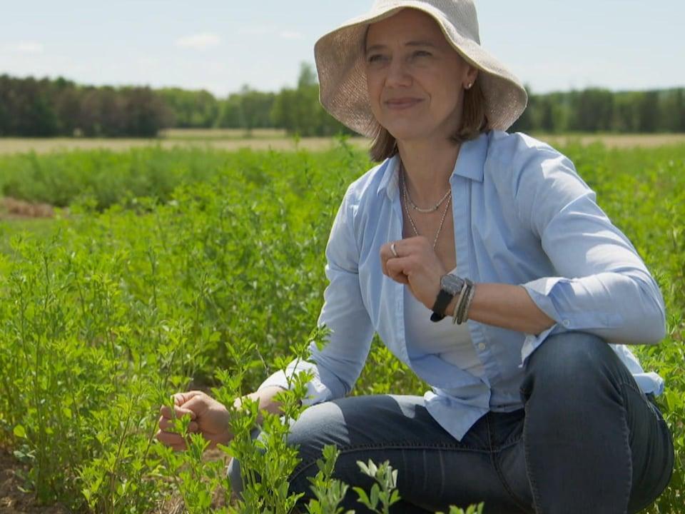 Annie Classens est chercheuse en génétique des plantes fourragères et à biomasse chez Agriculture et agroalimentaire Canada.