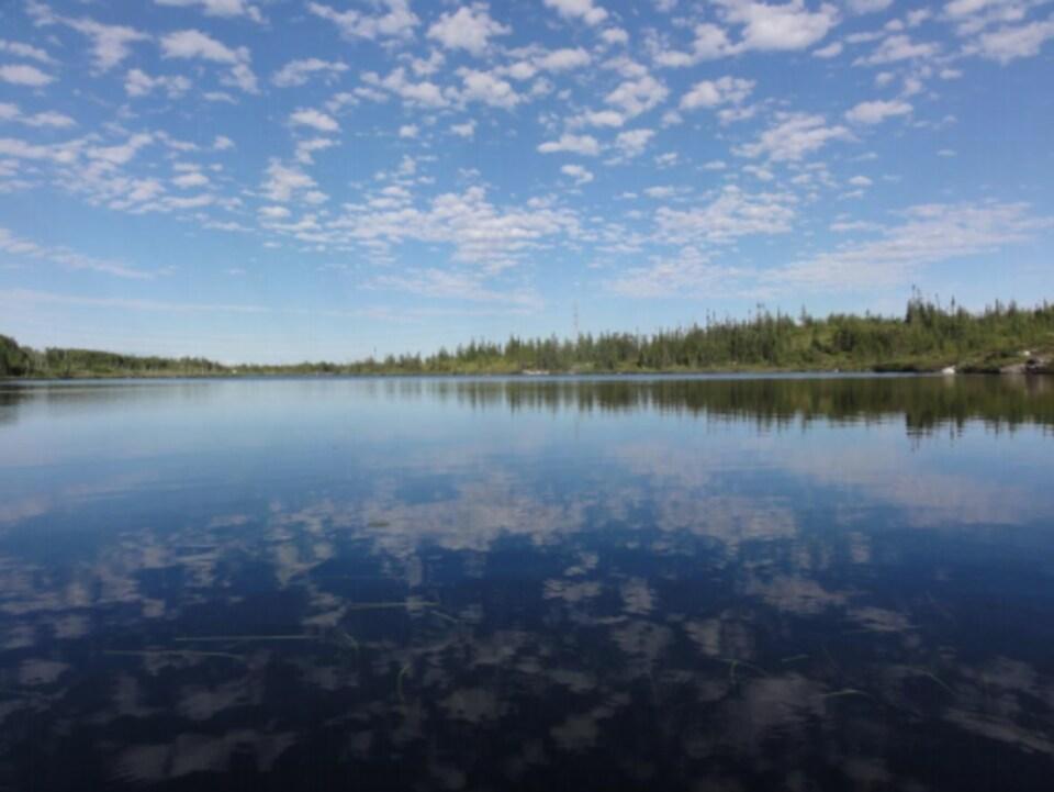 Un lac en été.