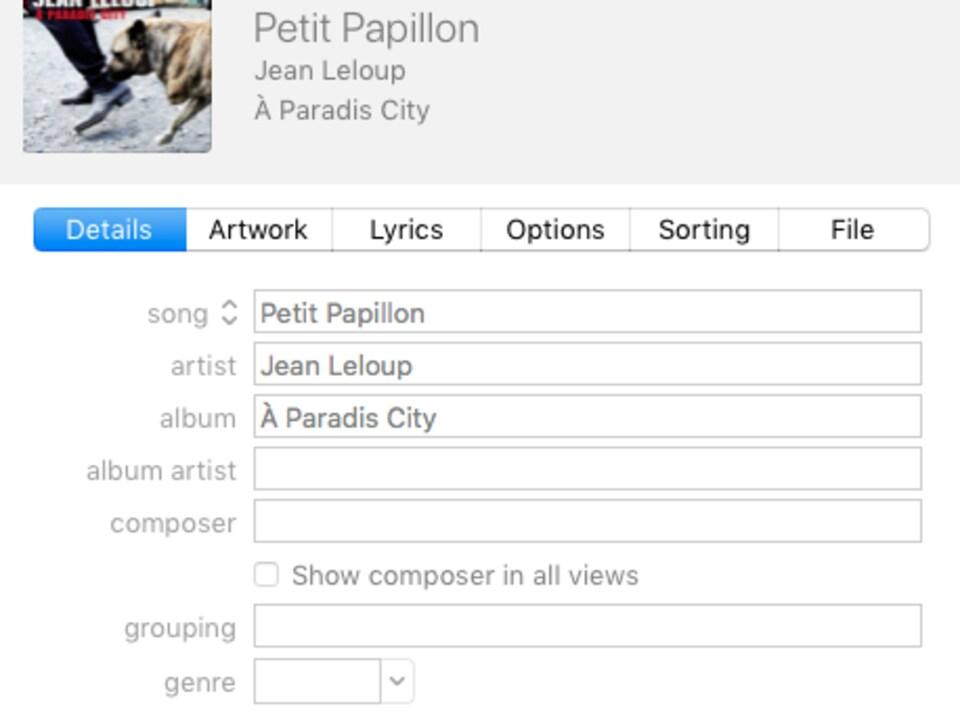 Une liste de métadonnées pour une chanson de Jean Leloup incluant le titre, le nom de l'artiste, le titre de l'album et le compositeur.