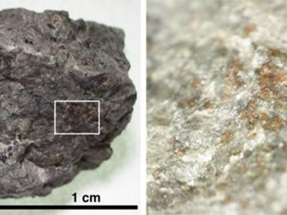 Un fragment du météorite Allan Hills 84001.
