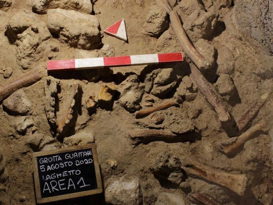 Des ossements sur le sol d'une grotte.