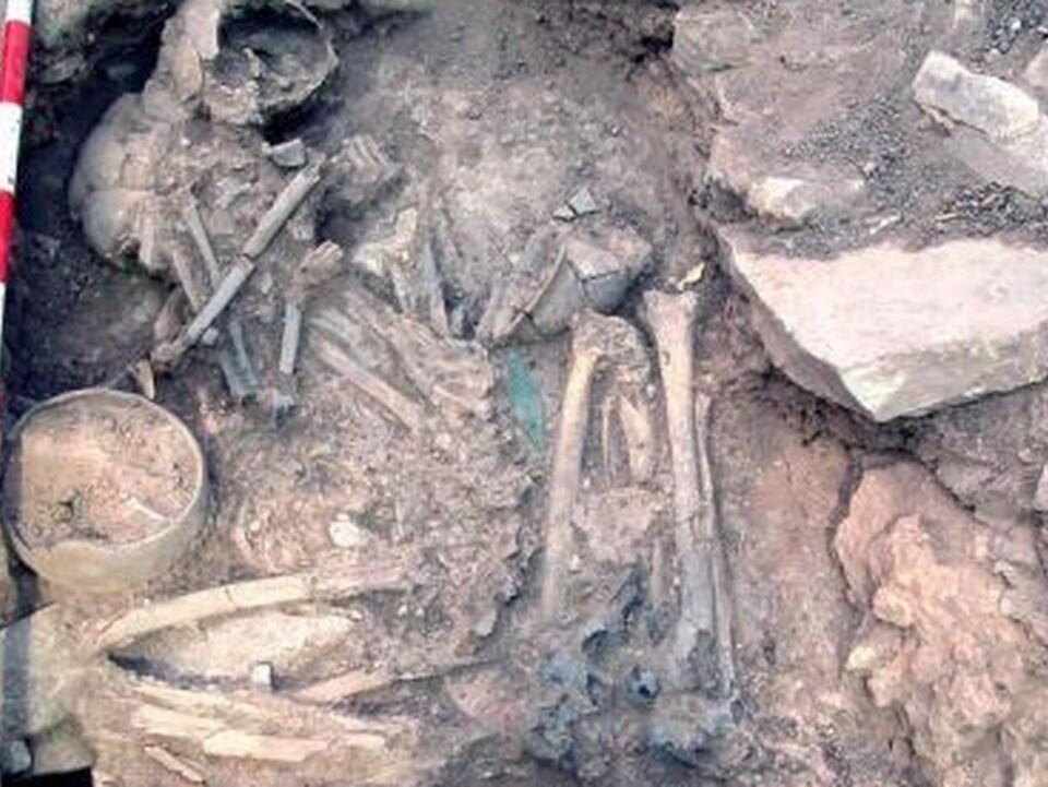 Les restes des mariés de Castillejo de Bonete : il était yamnaya et elle était ibérique.