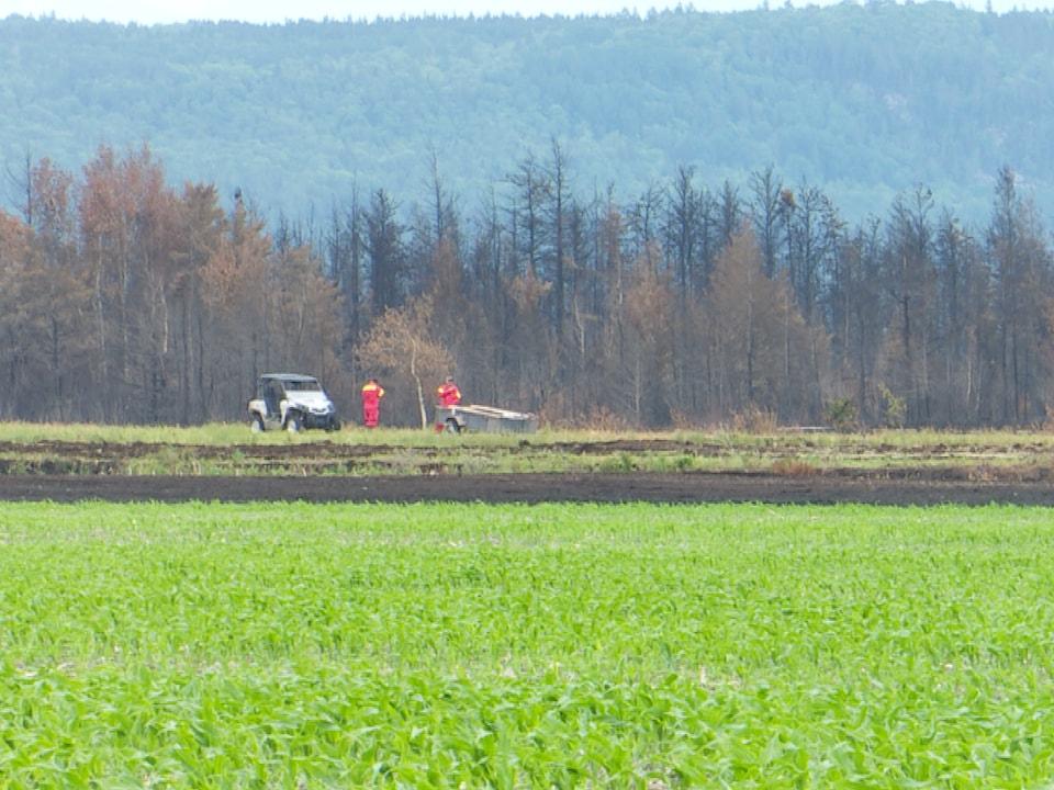 Deux travailleurs au loin dans un champ près de l'incendie de tourbière à Rivière-Ouelle.