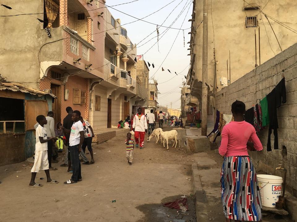 Des gens et des chèvres dans une rue étroite.